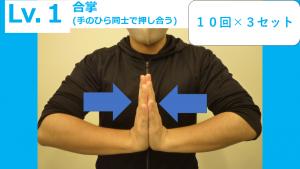 図1 (18)